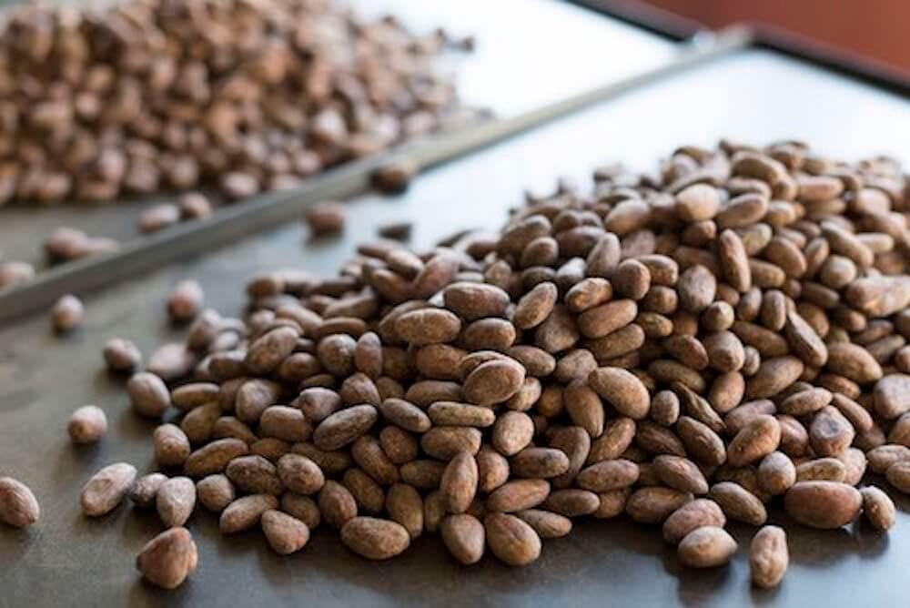 CRAFT CHOCOLATE WORKSのカカオ豆